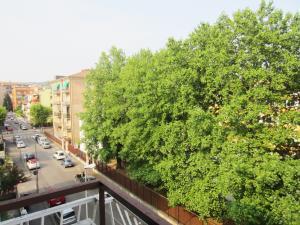Vai alla scheda: Appartamento Affitto - Verona (VR) | Borgo Trento - Codice -333-PP38