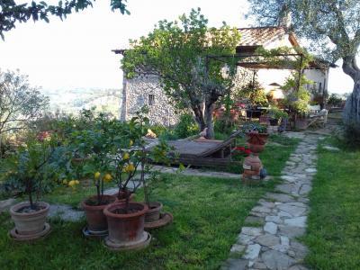 Vai alla scheda: Appartamento Affitto - Bagno a Ripoli (FI) | Ponte a Ema - Codice -172-RA102A