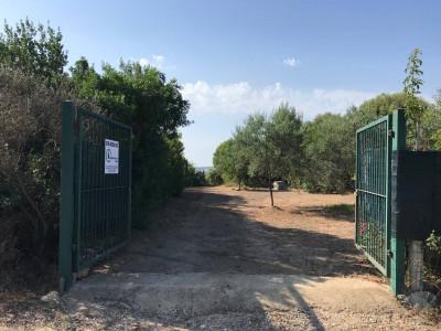 Vai alla scheda: Terreno Agricolo Vendita - Tortolì (NU) - Codice -31/21