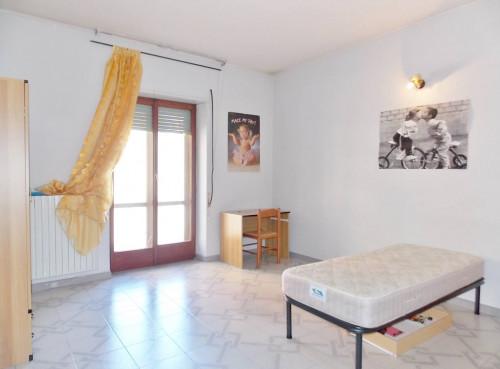 Vai alla scheda: Appartamento Affitto - Catanzaro (CZ) | Stadio - Codice -189-CZ02-AA785