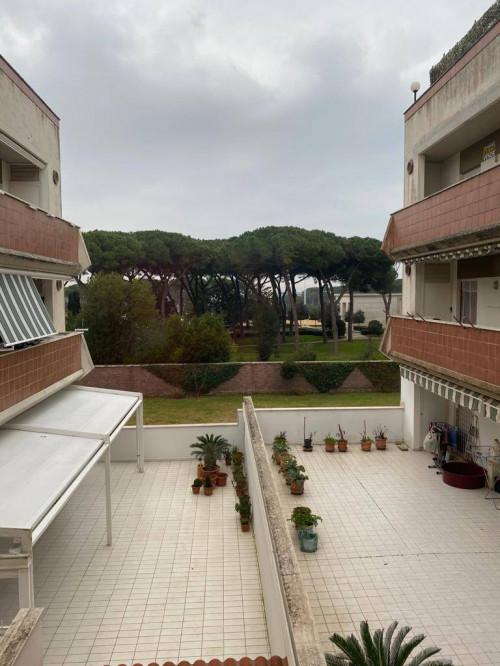 Vai alla scheda: Appartamento Vendita - Nettuno (RM) | San Giacomo - Codice -367-via san giacomo