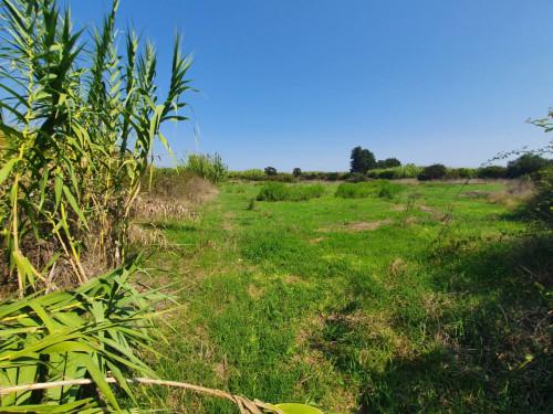 Vai alla scheda: Terreno Agricolo Vendita - Tortolì (NU) - Codice -212-18/69