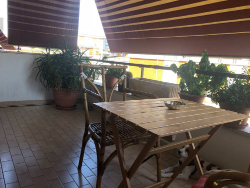 Vai alla scheda: Appartamento Vendita - Nettuno (RM) | San Giacomo - Codice -367-via monterosa