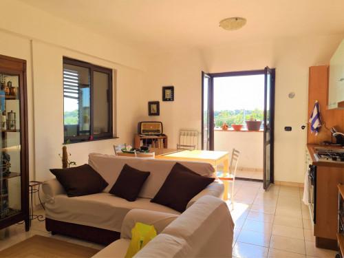 Vai alla scheda: Appartamento Affitto - Borgia (CZ) - Codice -188-CZ01-AA1642