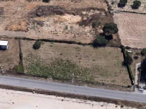 Vai alla scheda: Terreno Agricolo Vendita - Nettuno (RM) - Codice -367-via dei frati terreno