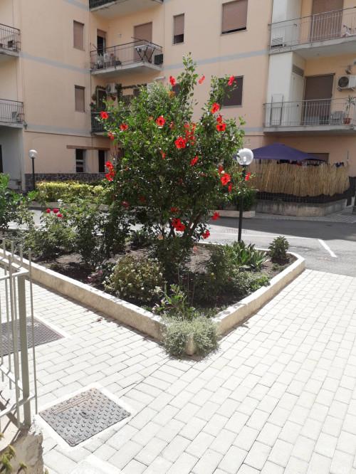 Vai alla scheda: Appartamento Vendita - Agropoli (SA) - Codice -382-3
