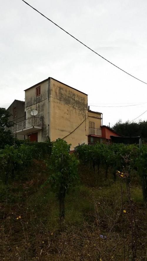 Vai alla scheda: Rustico / Casale / Corte Vendita - Roccadaspide (SA)   Fonte - Codice -382-4