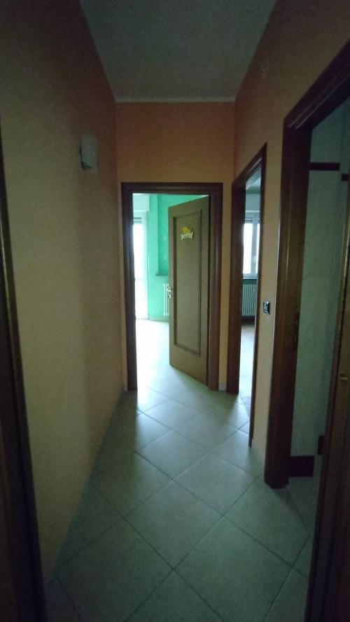 Vai alla scheda: Appartamento Affitto - Frassineto Po (AL) - Codice -170-165