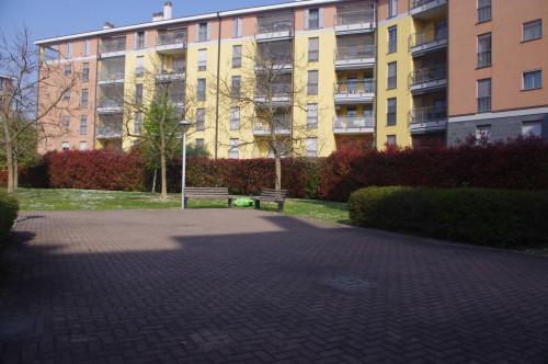 Vai alla scheda: Appartamento Vendita - Buccinasco (MI) - Codice -109-B263