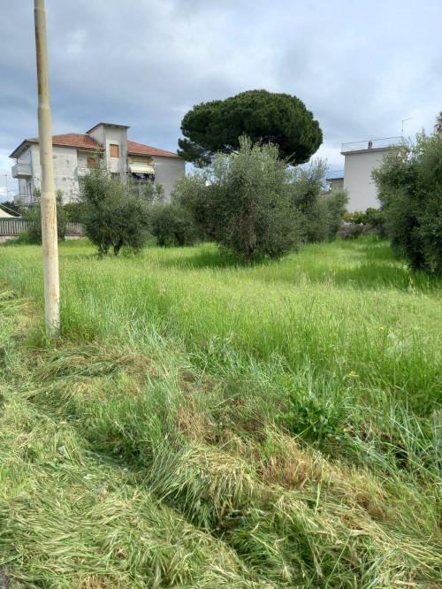 Vai alla scheda: Appartamento Vendita - Capaccio Paestum (SA)   Capaccio Scalo - Codice -382-27