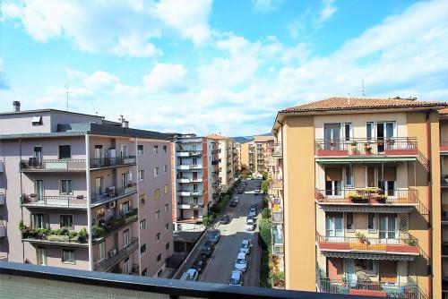 Vai alla scheda: Appartamento Affitto - Verona (VR) | Ponte Catena - Codice -342-PP52