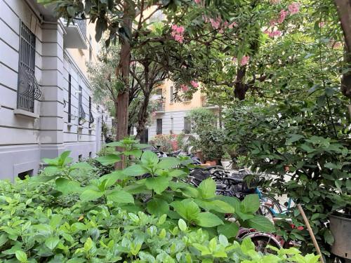 Vai alla scheda: Appartamento Vendita - Milano (MI) | Città Studi - Codice -86-21045