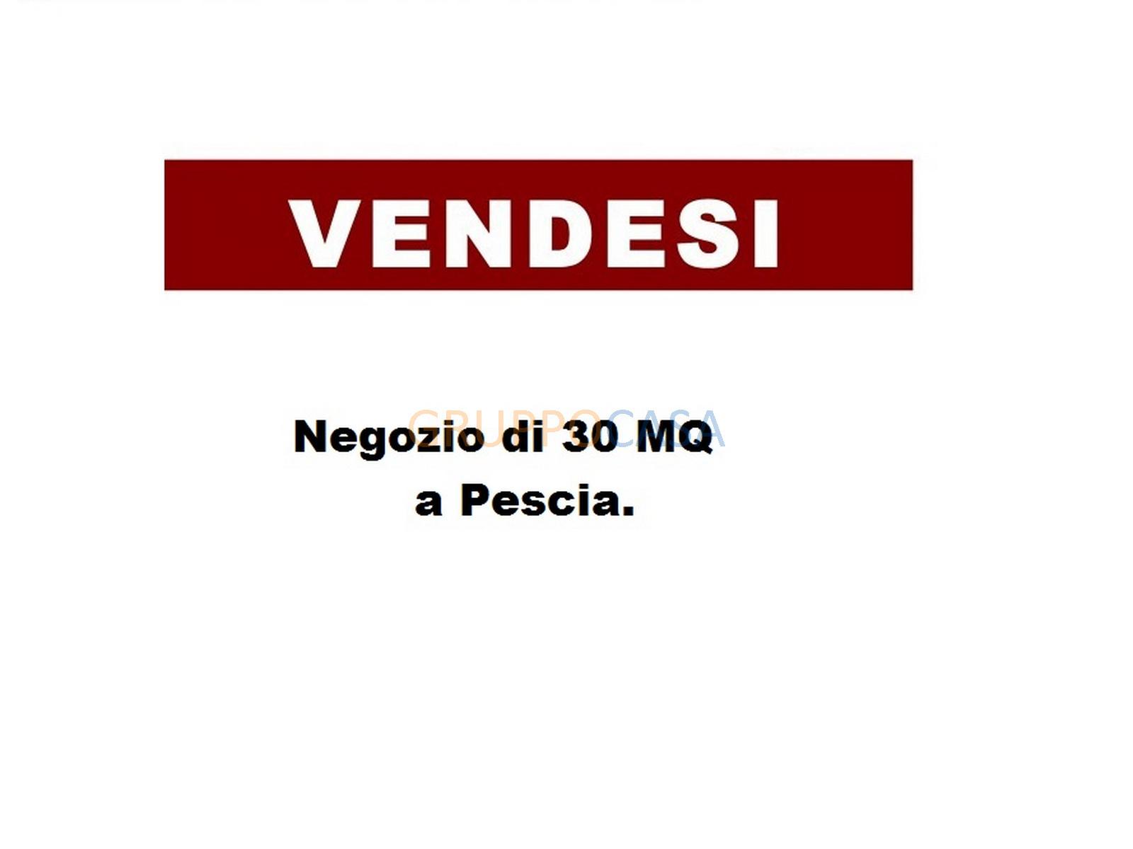 Negozio / Locale in vendita a Pescia, 9999 locali, zona Località: Centro, prezzo € 30.000 | CambioCasa.it