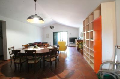 Affitto Estivo in Affitto a Campomarino