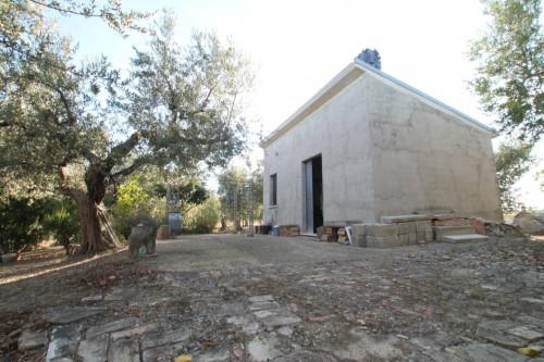 Casale in Vendita a San Martino in Pensilis