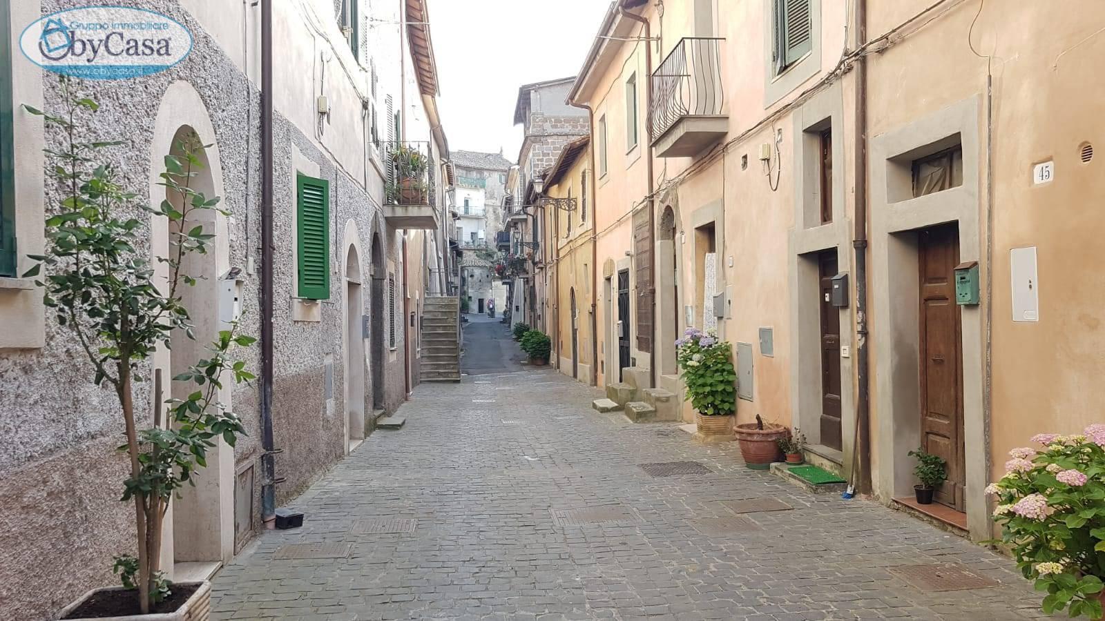 Appartamento in vendita a Bassano Romano, 2 locali, prezzo € 23.000   CambioCasa.it