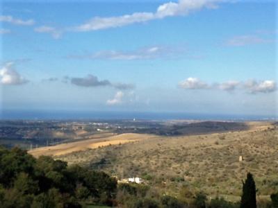 Terreno Agricolo in Vendita a Civitavecchia
