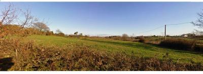 Terreno Agricolo in Vendita a Bracciano