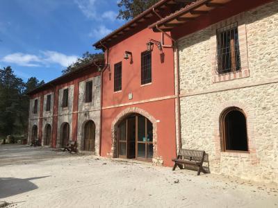 Azienda Agricola in Vendita a Tolfa