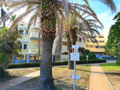 Appartamento monolocale in Affitto a Santa Marinella