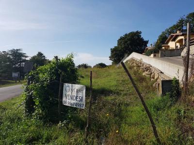 Terreno edificabile in Vendita a Manziana