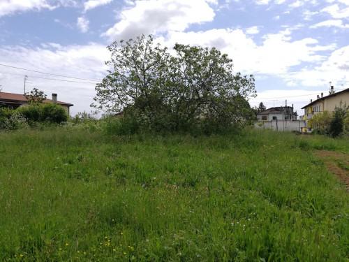 Terreno edificabile in Vendita a Bassano Romano