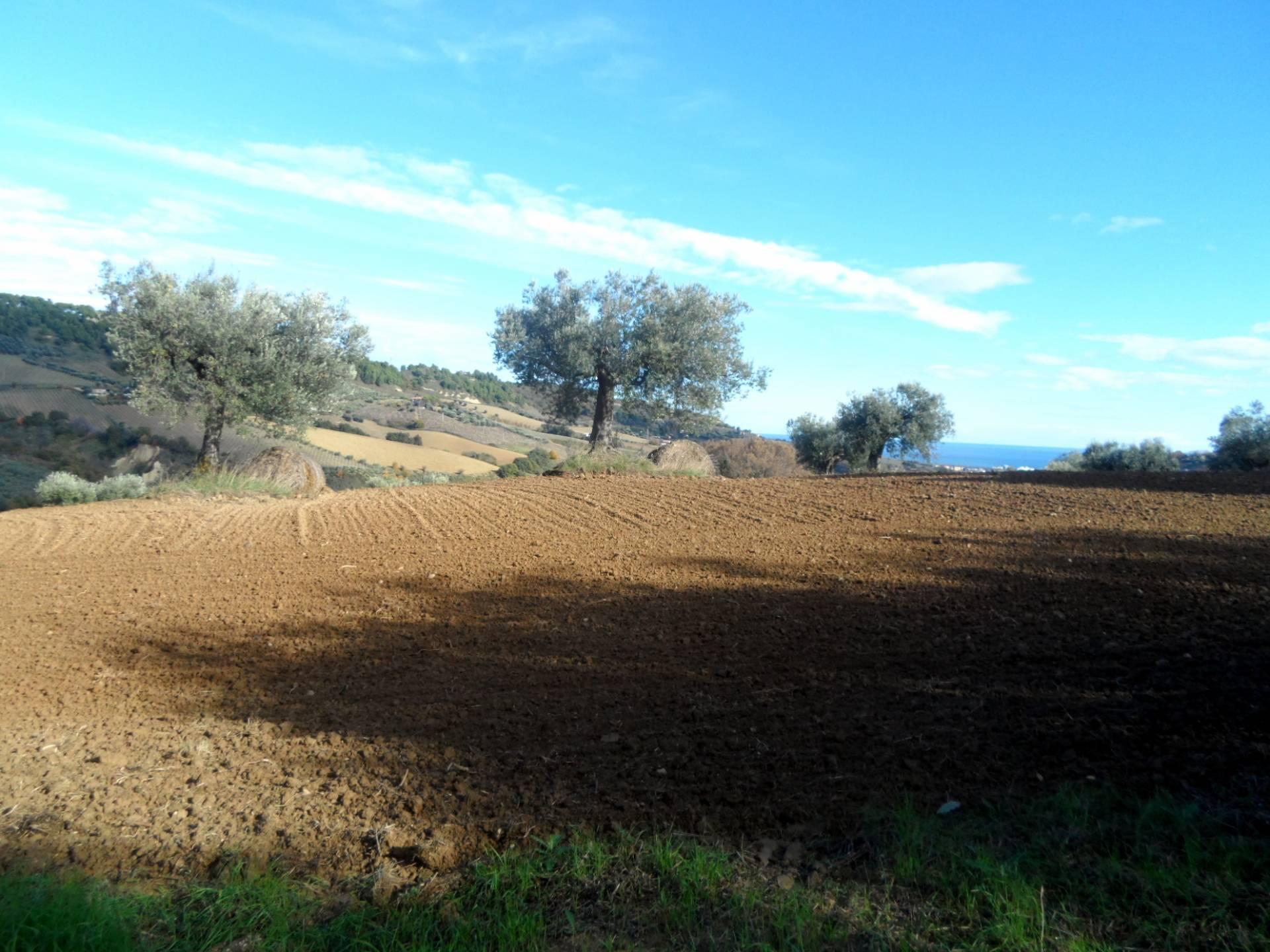 Terreno Agricolo in vendita a Monteprandone, 9999 locali, zona obuchi, prezzo € 80.000 | PortaleAgenzieImmobiliari.it