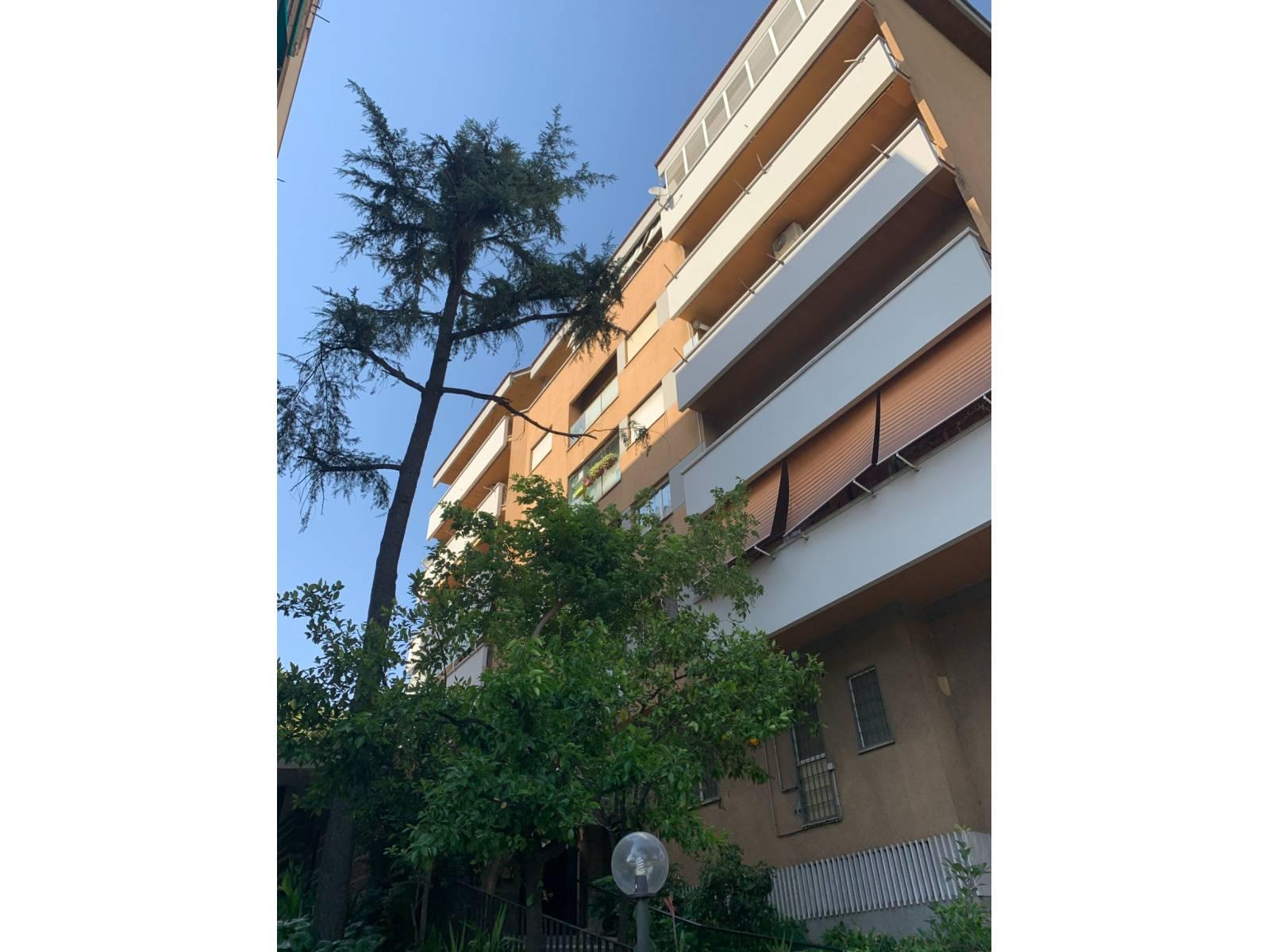 1118419103 Trilocale in Via Nomentana, Roma, Zona Talenti