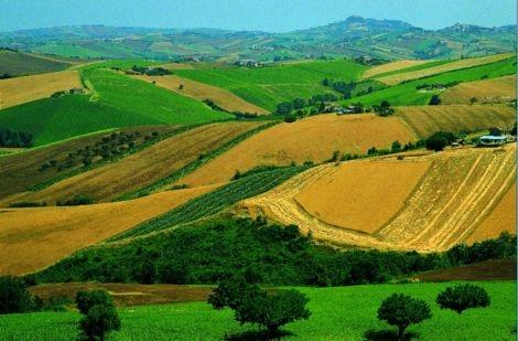 Terreno Agricolo in vendita a Riolo Terme, 9999 locali, prezzo € 2.000.000 | CambioCasa.it