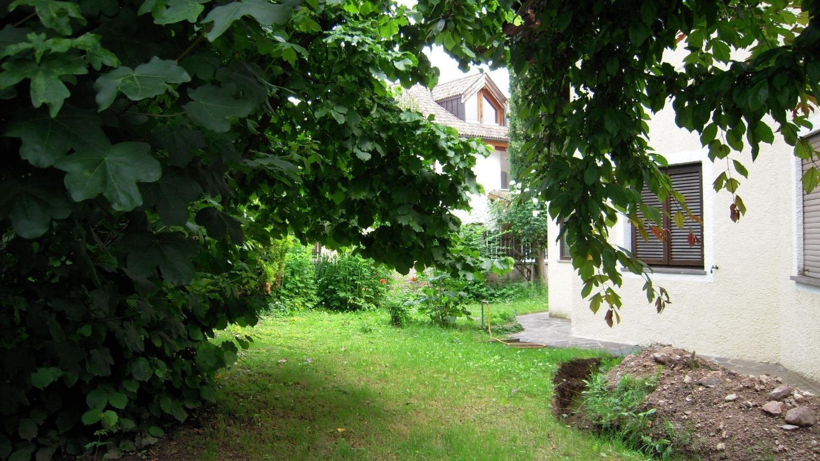 Soluzione Indipendente in affitto a Appiano sulla Strada del Vino, 1 locali, prezzo € 1.800 | PortaleAgenzieImmobiliari.it