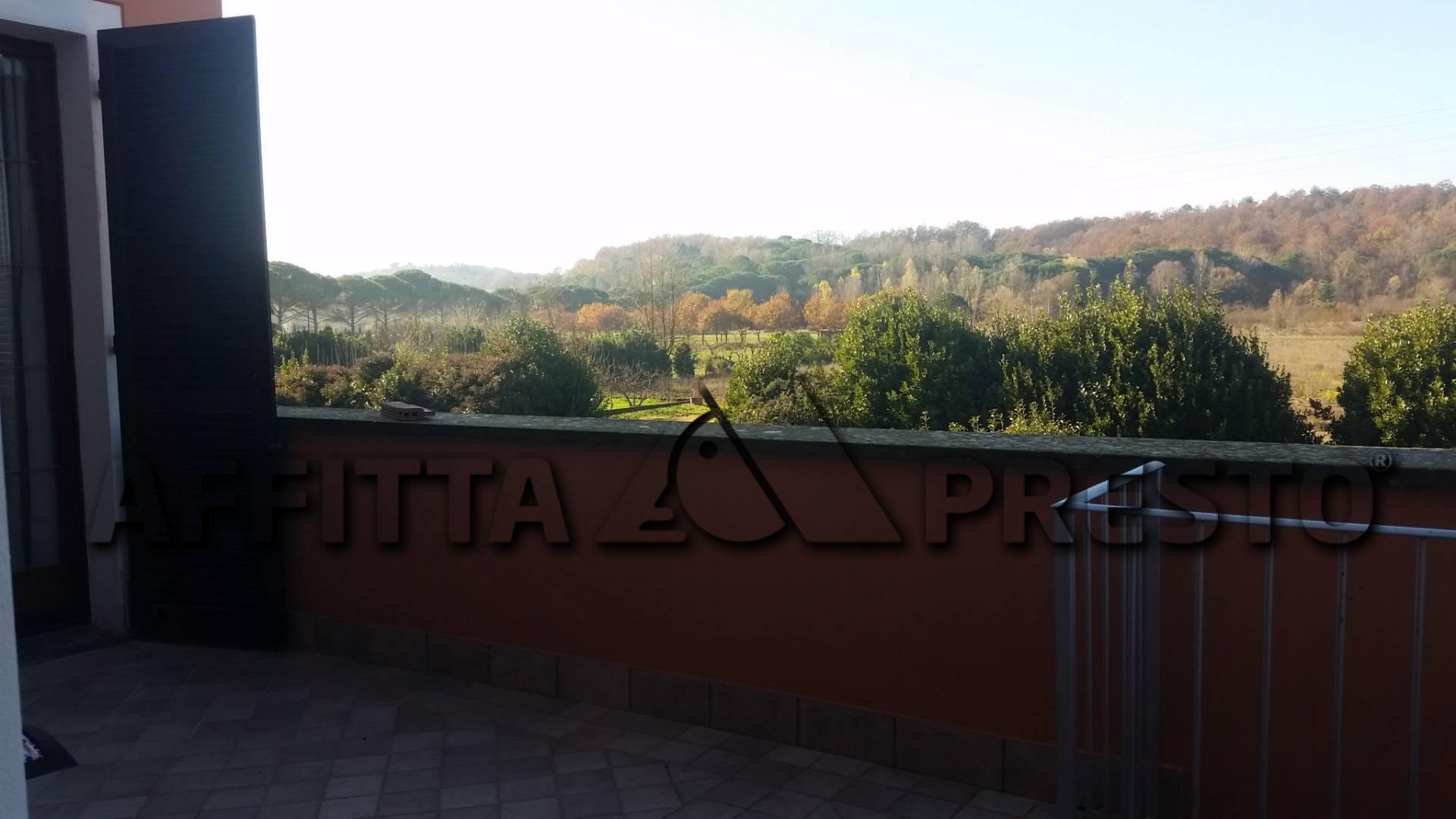 Appartamento in affitto - Ponsacco