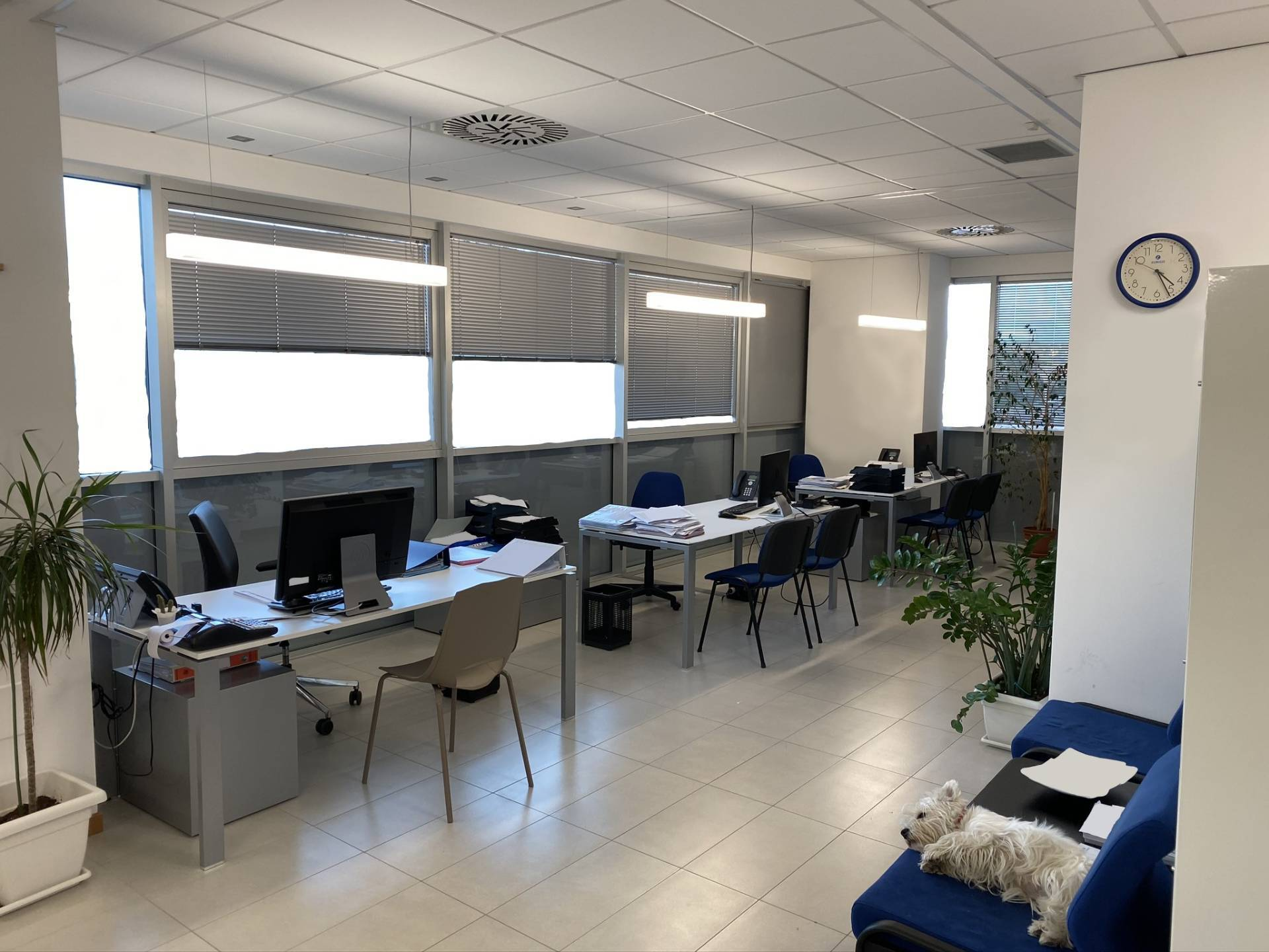 UFFICIO in Affitto a Tombaccia, Pesaro (PESARO)