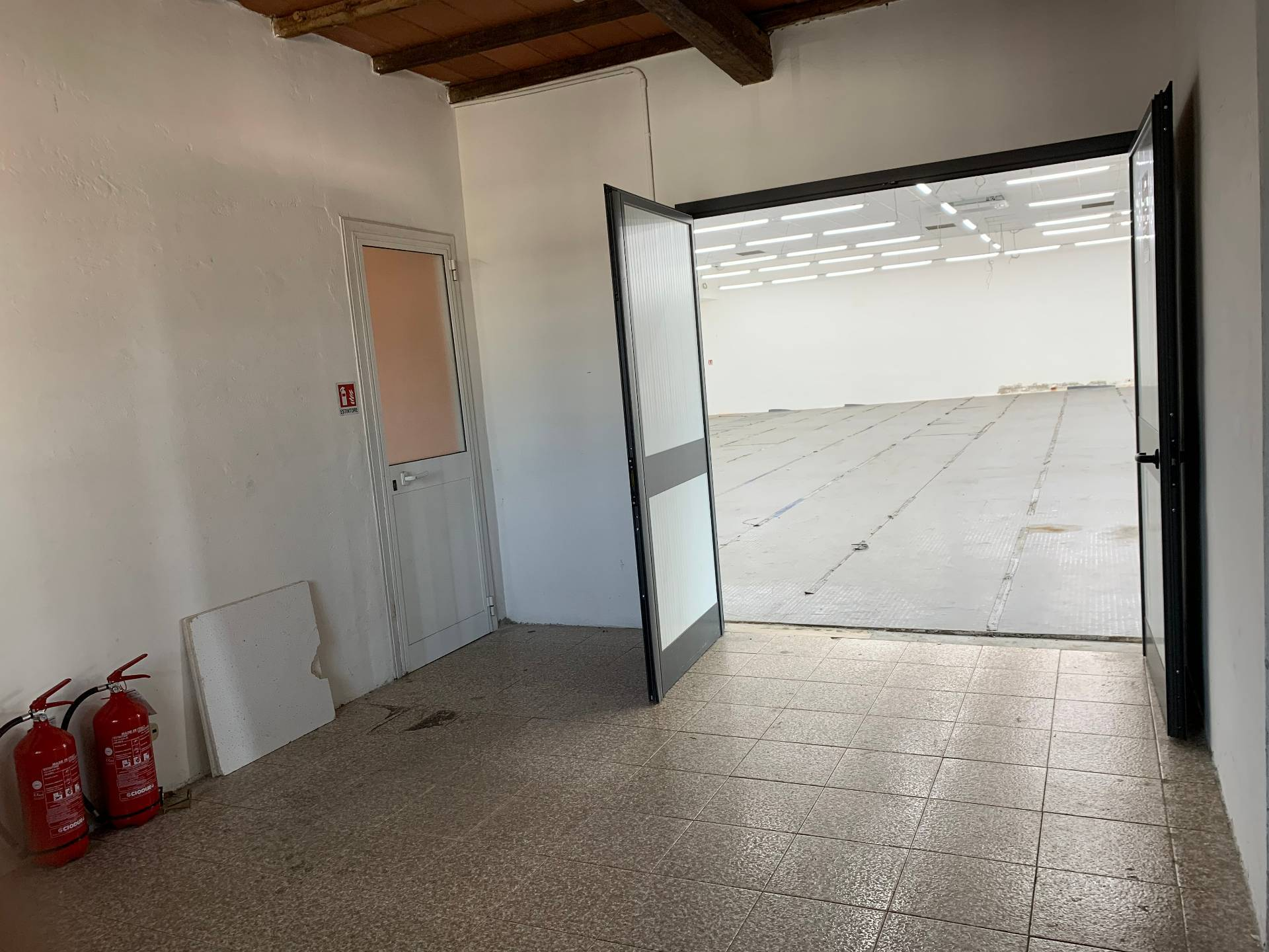 Attività commerciale in affitto - Pietrasanta