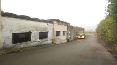 Capannone industriale a Montopoli in Val d'Arno (2/5)
